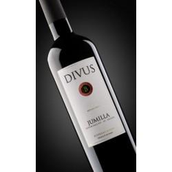Divus 2009